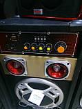 Акустична система Ailiang 198E , потужна система, блютуз, караоке, FM, фото 5