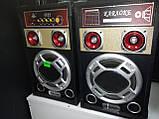 Акустична система Ailiang 198E , потужна система, блютуз, караоке, FM, фото 4