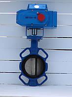 Батерфляй Ду 50 з електроприводом Bundor