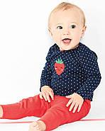 2 Боди + Штаны Carters для новорожденной девочки 46-55 см. Костюм тройка, фото 3