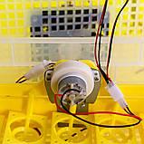 Инкубатор автоматический Теплуша Europe 112. 12В, ТЭНовый, фото 3