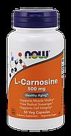 Now L-Carnosine 500 mg 50 veg caps