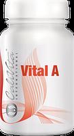 Vital A  Витамин А (таблетки, 90 шт.)