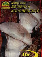 Мицелий грибов Вешенка Королевская, 10г