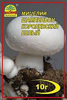 Мицелий Шампиньон Королевский белый 10г