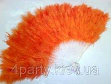 Веер перьевой оранжевый 270216-163