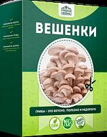 Mushrooms Farm (Грибна Ферма) - набір для вирощування грибів в домашніх умовах