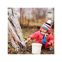 Побелка дерева, фото Sevenmart
