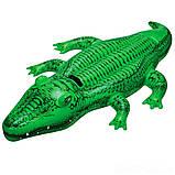 Детский надувной плотик для катания Intex 58546 Крокодил 168 х 86 см, фото 2