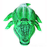 Детский надувной плотик для катания Intex 58546 Крокодил 168 х 86 см, фото 5
