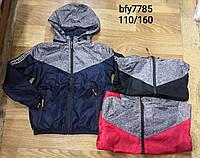 Ветровка для мальчиков оптом, Glo-story, 110-160 см,  № BFY-7785, фото 1