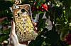 Силиконовый чехол СP-Case на Meizu Pro 6 Plus Kiss, фото 3