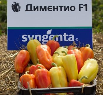 Семена перца сладкого Диментио F1 (500 сем.) Syngenta