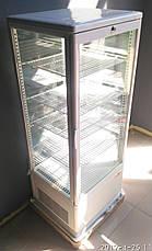 Шкаф холодильный Frosty RT98L-1D (white, black), фото 2