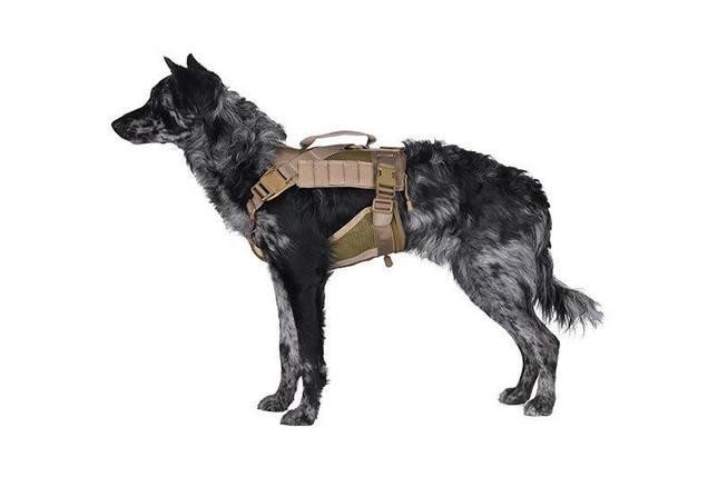Szelki taktyczne dla psa - tan [Primal Gear], фото 2