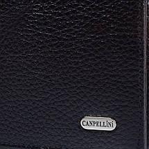 Мужской кожаный кошелек CANPELLINI (КАНПЕЛЛИНИ) SHI1042-7, фото 3