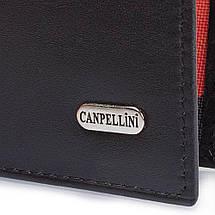 Мужской кожаный кошелек CANPELLINI (КАНПЕЛЛИНИ) SHI1108-1, фото 2