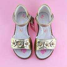 Босоножки для девочки с закрытой пяткой Золото Том.м размер 31, фото 3