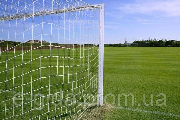 Сітка футбол ПП100х100х2,2 (комплект 2 шт) сетка безуловая футбольная
