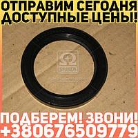 ⭐⭐⭐⭐⭐ Манжета 034  с пружиной      (пр-во Россия)