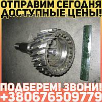 ⭐⭐⭐⭐⭐ Вал первичный КПП КАМАЗ (15 КПП) (производство  КамАЗ)  15.1701027