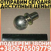 ⭐⭐⭐⭐⭐ Головка шаровая гидроцилиндра (пр-во Россия)