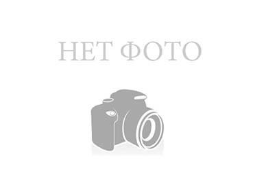 Шестерня распредвала 2.0JTD под болт PEUGEOT EXPERT 07- (ПЕЖО ЕКСПЕРТ)
