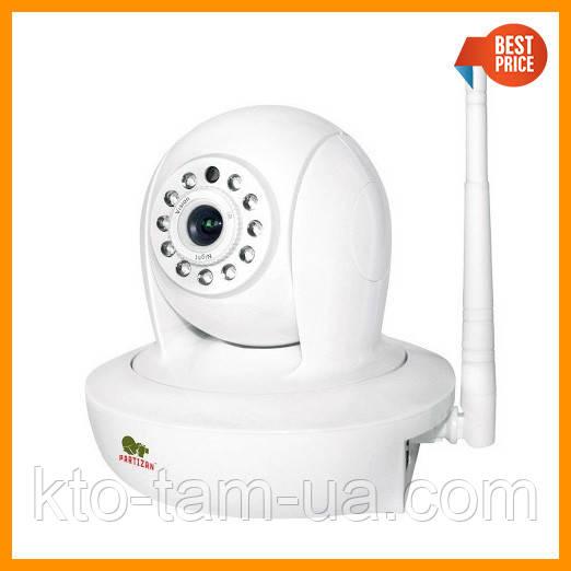 IP видеокамера Partizan IPH-1SP-IR Cloud robot