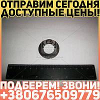 ⭐⭐⭐⭐⭐ Шайба КПП ГАЗ 3307,53 оси блока з/х (пр-во ГАЗ)