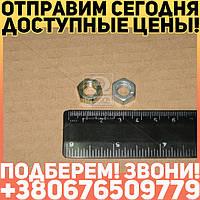 ⭐⭐⭐⭐⭐ Гайка М8 хомута глушителя ВОЛГА,ГАЗЕЛЬ,СОБОЛЬ,ГАЗ (покупн. ГАЗ)