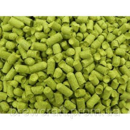 Хмель Нозерн Брювер Nothern Brewer, 2018, 7% 25 грамм Вакуум, фото 2