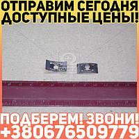 ⭐⭐⭐⭐⭐ Держатель эмблемы решетки радиатора (пр-во ГАЗ)