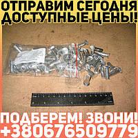 ⭐⭐⭐⭐⭐ Заклепка 8х28 накладки колодки тормоза ЗИЛ, КРАЗ, ИКАРУС (64шт) (пр-во Украина)