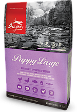 Корм Orijen для щенков крупных пород, Puppy Large breed 11.4 кг