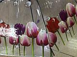 Зонтик детский прозрачный с цветами тюльпанов по краю купола  на 8 спиц , фото 2