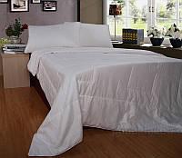 Одеяло шелковое Word of Dream зимнее 145х205 см вес 1600 г