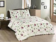 Полуторное постельное белье бязь Salvia CLASSI AR25