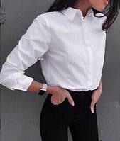 Рубашка стильная женская, фото 1