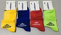 Спортивные носки ТМ Adidas оптом