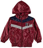 Куртка для ребёнка/мальчик 70% полиэстер, 30% хлопок красный TERRY все размеры  12 мес (80 см)