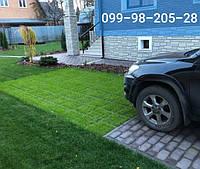 Газон для ЭКО-парковки 175грн/кг смесь низкорослых газонных трав семена 2019 оптом