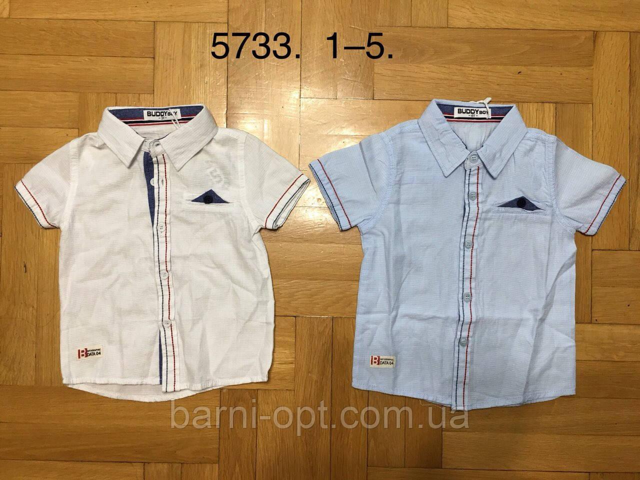 Сорочки на хлопчика оптом, Buddy boy , 1-5 рр