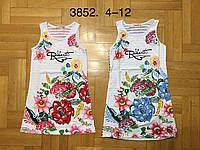 Платье для девочек оптом, F&D, 4-12 лет,  № 3852, фото 1