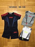 Набор 2 в 1 для мальчиков оптом, Active Sport, 98-128 см,  № HZ-6942, фото 1