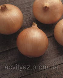 Семена лука Кенди-Candy F1 - 250 000 семян