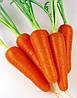 Семена моркови Абако-Abaco F1, фр. 1, 4-1, 6 - 1 млн. семян