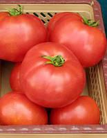 Семена томата Элегро F1-Elegro F1 - 1000 семян