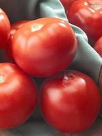 Семена томата Флорида 47 R F1-Florida 47 F1 - 1000 семян