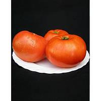 Семена томата МИРСИНИ F1 / MIRSINI F1- 1000 семян