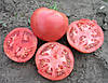 Семена томата РОЗАЛИЗА F1-Rosaliesa F1 - 1000 семян